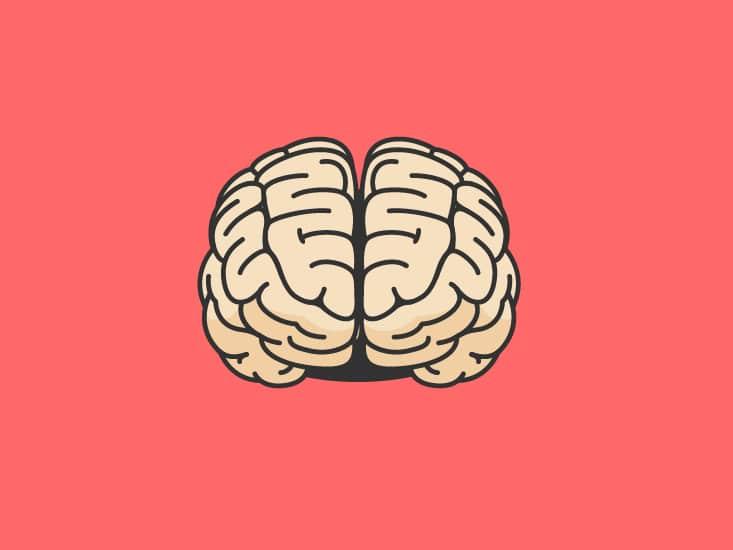 Relazione intestino cervello